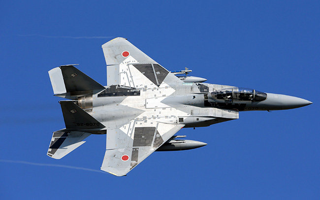 Mitsubishi F-15J, Japan Air Force (JAPAN SECURITY WATCH)