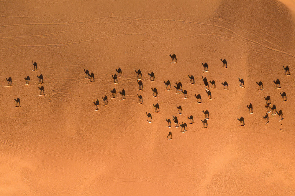 Highly Commended: Bachir Moukarzel con 'Nomads'